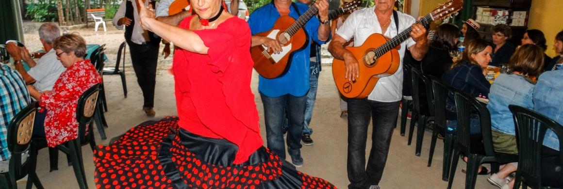 Journée détente en Camargue 2015 GROUPE 2B